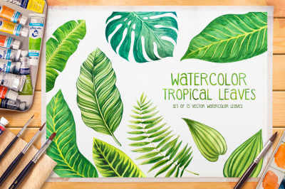Tropical leaves. Watercolor vector.