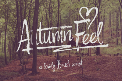 Autumn Feel font