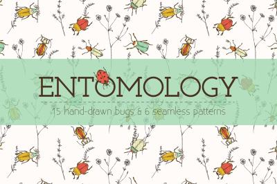 Entomology: Hand-drawn Bugs & Patterns