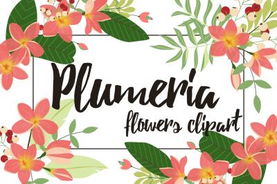 Plumeria Flowers Clipart