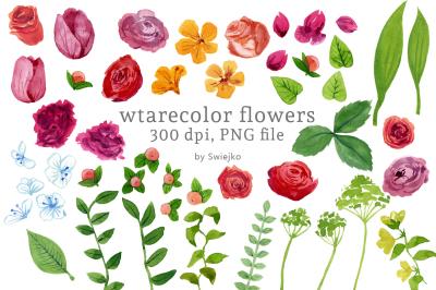 Digital Clip Art, Watercolor Flowers, Floral Clip Art, Watercolor Meadow,