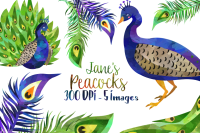 Watercolor Peacocks Clipart