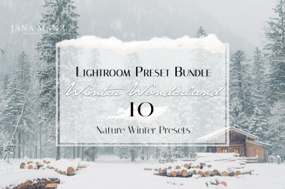 Winter Wonderland Lightroom Preset Bundle