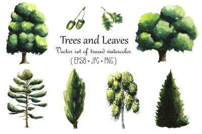 Watercolor trees set