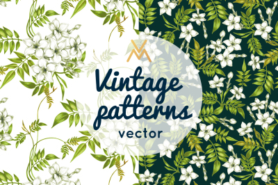 Floral patterns. Jasmine