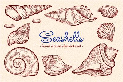 Seashells design elements set
