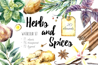 Herbs and Spices Watercolor set