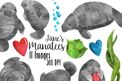 Watercolor Manatees Clipart