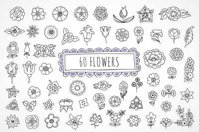 60 hand drawn flowers