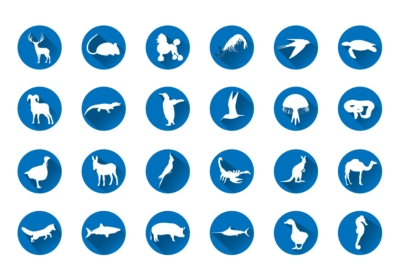 Exclusive 56 Different Flat Animal Silhouettes Icon Set