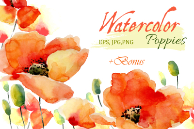 Watercolor Poppies. Flowers set+Bonus