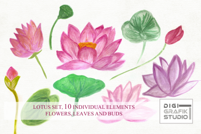 Watercolor Lotus set, Watercolor flowers, 10 elements