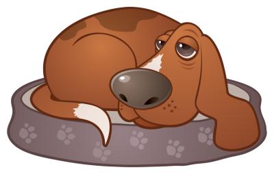 Sleepy Hound Dog