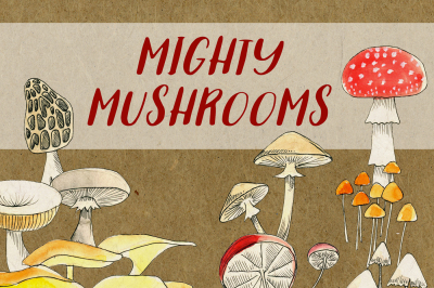 Mighty Mushrooms Watercolor Clip Art