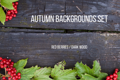 Autumn backgrounds set with branches of red berries of a Guelder rose or Viburnum shrub on awooden background