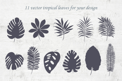 Tropical leaves and patterns. Vintage design.