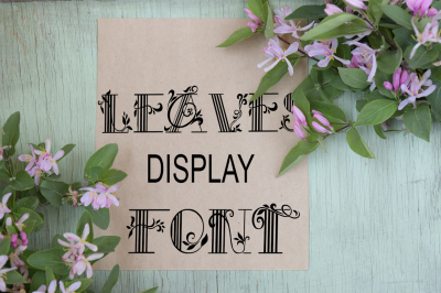 Leaves pattern display font