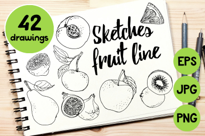 Sketches fruit line