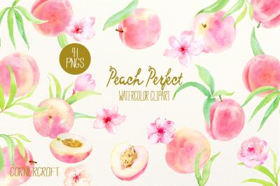 Watercolor Clipart Peach Perfect