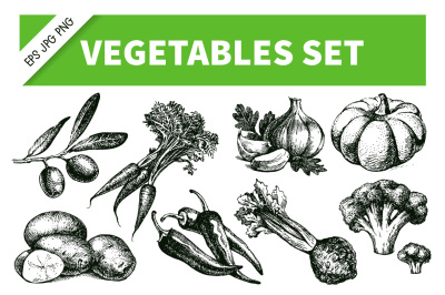 Vegetables Hand Drawn Sketch Vector Set 3