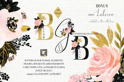 Blush Gold Black. Watercolour flowers Digital clipart designer kit.