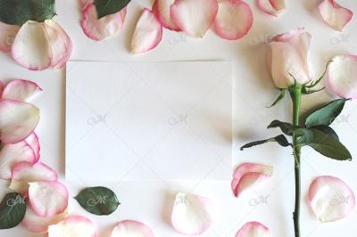 Rose & Petals Card Mockup. PSD+JPG