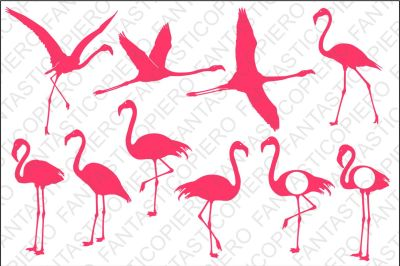 Flamingo SVG files for Silhouette Cameo and Cricut.