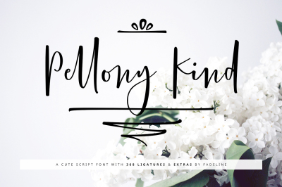 Pellony Kind Cute Script