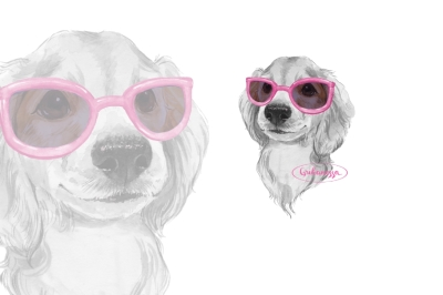 Dog. Pink glasses