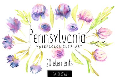 """""""Pennsylvania"""". 20 floral Elements."""