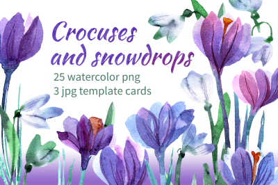 Watercolor crocuses and snowdrops