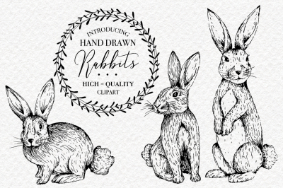 Rabbits Clipart Collection - Hand Drawn PNGs