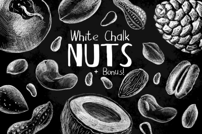 White Chalk Nuts Illustrations