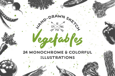 Collection of hand-drawn vegetables