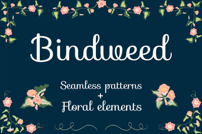 Bindweed. Seamless patterns, brushes, floral compositions