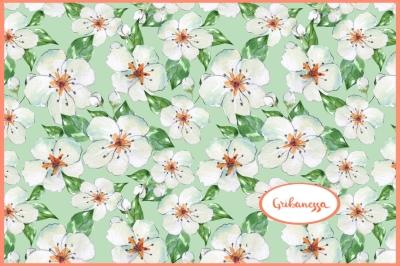 Blooming apple tree. Pattern