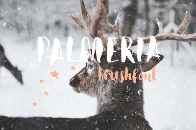 Palmeria Brush Font