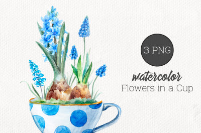 Watercolor set Flowers in a Cup (PNG)
