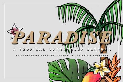 Tropical Watercolors & Illustrations