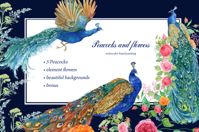 Peacocks and flowers/watercolor