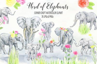 Watercolor herd of elephants