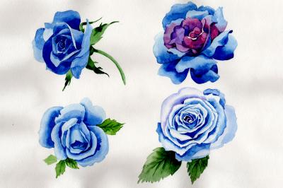 Wildflower blue rose PNG watercolor set