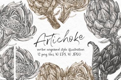Artichoke. Vector illustration