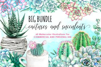 Watercolor Succulents and Cactus Watercolor Floral Watercolor Flowers