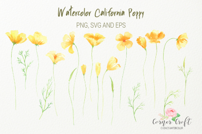 Watercolor California poppy, png, svg, eps