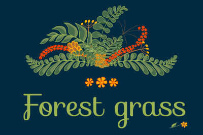 Forest Grass. Seamless patterns and floral elements