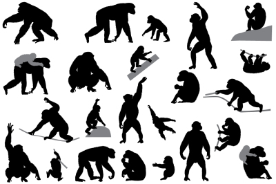 Silhouettes of chimpanzees and cubs