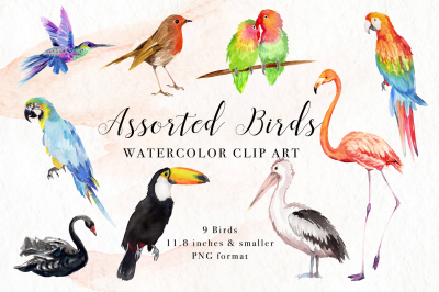 Assorted Birds Watercolor Clip Art