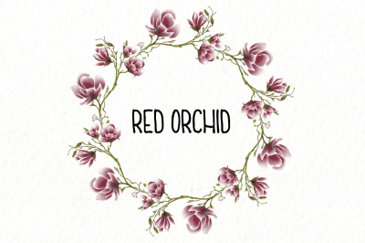 Rounded Red Orchid