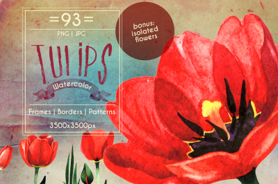 Amazing tulips PNG watercolor flower set